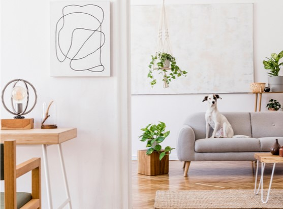Een personal touch: maak je huis persoonlijker met accessoires